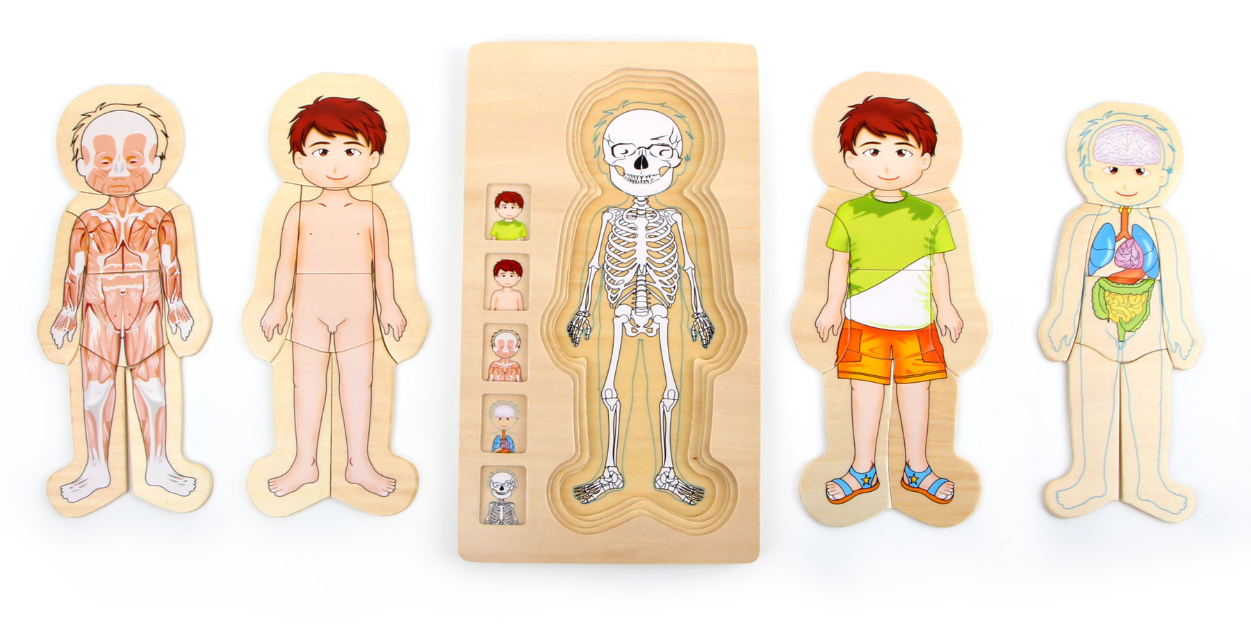 Small Foot Puzzle Anatomia Tim